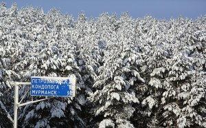 фотография Игоря Подгорного