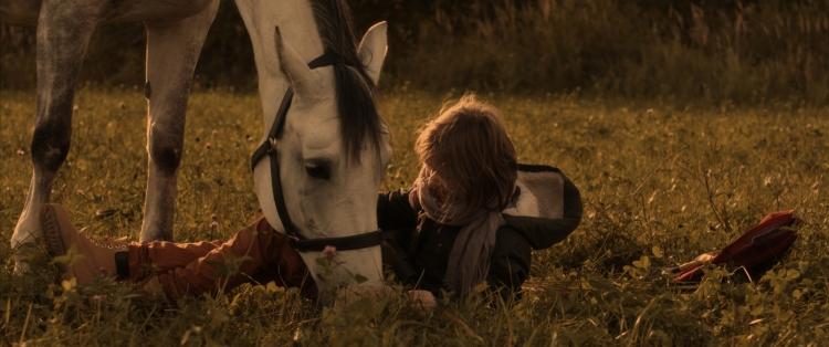 Horse_slides 03